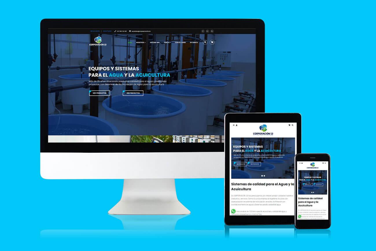 corporacion-s3-acuicultura-y-agua-diseño-web