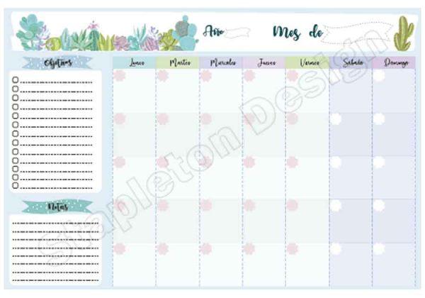 planner-mensual-cactus